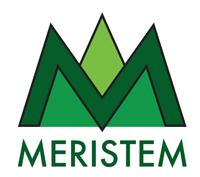 The meristem